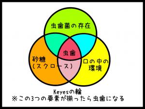 Keyesの3つの輪(虫歯発生の3要素)