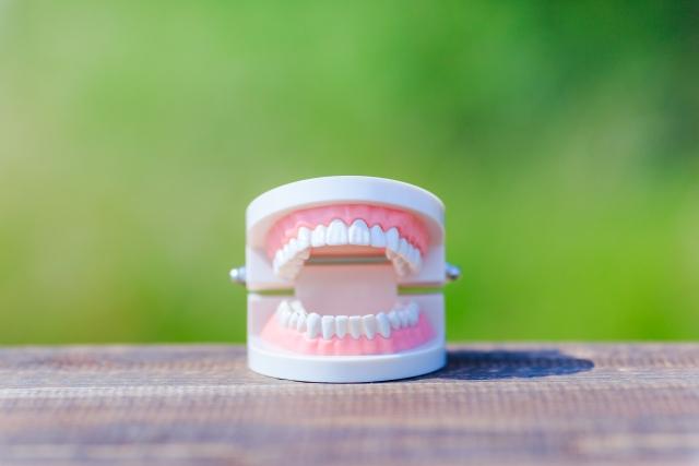 歯茎の臭いの対処法