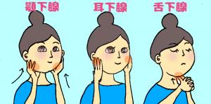 唾液腺マッサージ(顎下腺耳下腺舌下腺)のイラスト